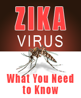 ZIKA Icon.png